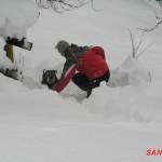 2012 lavinovky sipkova