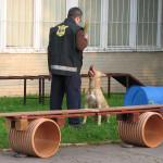 Ukazky internat Rosinska april 2014 005