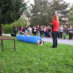 Ukazky internat Rosinska april 2014 015