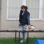 Ukazky internat Rosinska april 2014 034