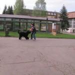 Ukazky internat Rosinska april 2014 044