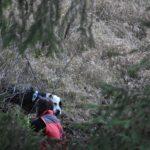 vyhľadávanie osôb v lese 261